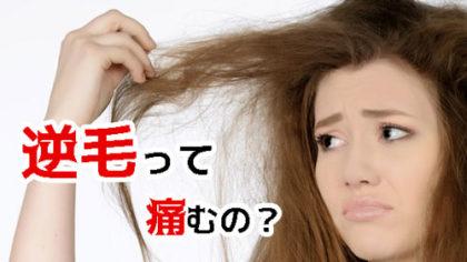 逆毛で髪は痛む?正しい逆毛の仕組みを解説